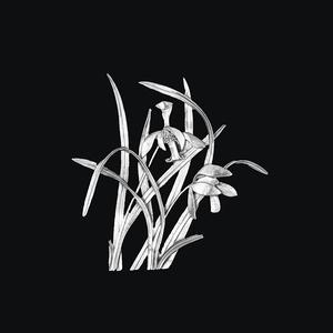 锡画 兰花 -兰花