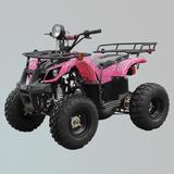 沙滩车 -ZL-ATV110-7