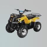 电动车 -ZL-ATV50-2E
