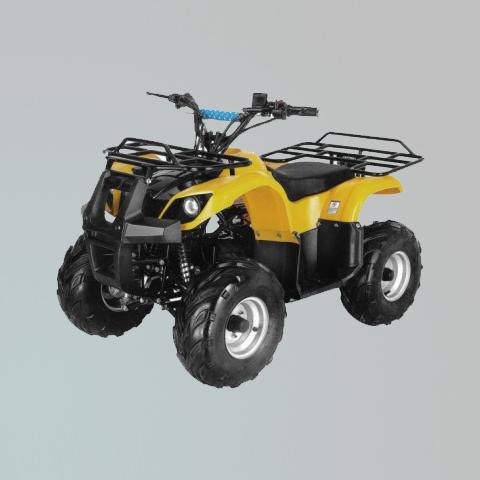电动车-ZL-ATV50-2E