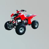 沙滩车 -ZL-ATV200