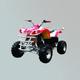 沙滩车-ZL-ATV150S-3