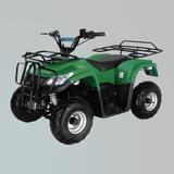 电动车 -ZL-ATV50-1E