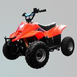 电动车 -ZL-ATV50E