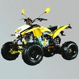 沙滩车 -ZL-ATV200S-7