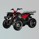 沙滩车-ZL-ATV110