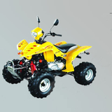 沙滩车 -ZL-ATV150S-2