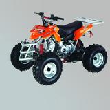 沙滩车 -ZL-ATV110-5