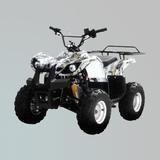 沙滩车 -ZL-ATV50-2