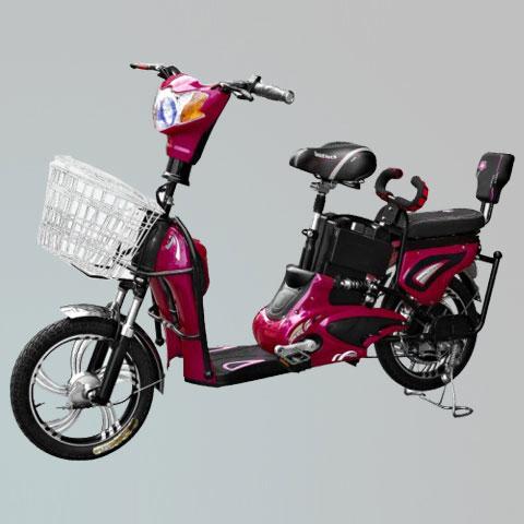 电动自行车-ZL-06