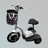 高尔夫球车 -ZL-018E