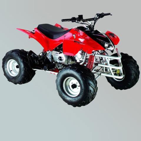 沙滩车-ZL-ATV110-2