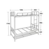 公寓床/學生床係列 -FX-7380