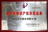 2013知识产权示范企业