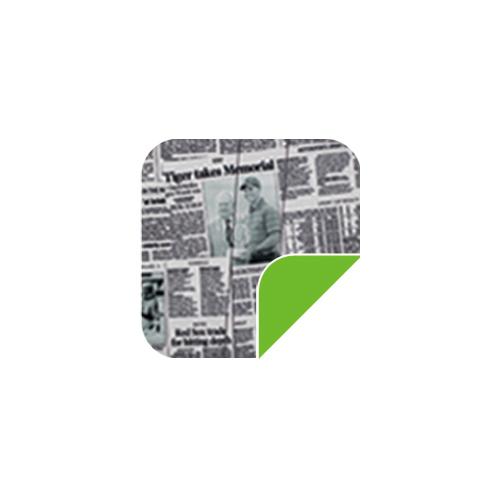P024报纸/绿-P024报纸/绿